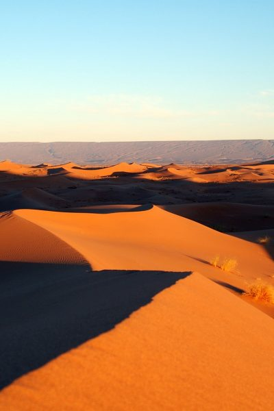 Best Tours in Morocco