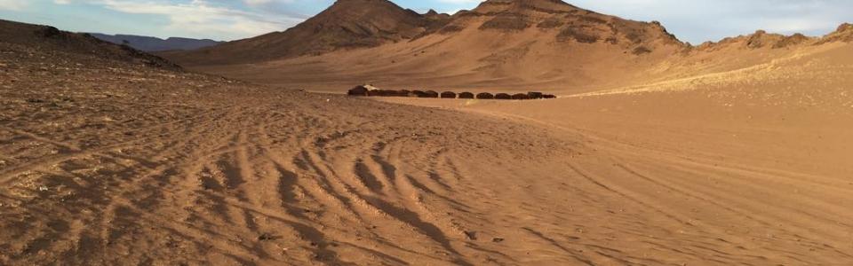 Trip to Zagora RoamingCamelsMorocco