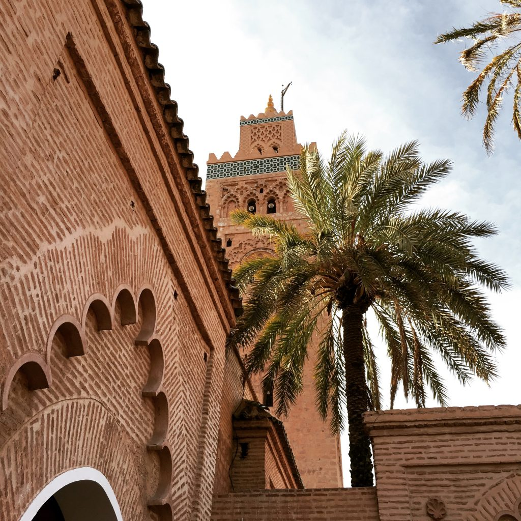 Marrakechwithroamingcamelsmorocco