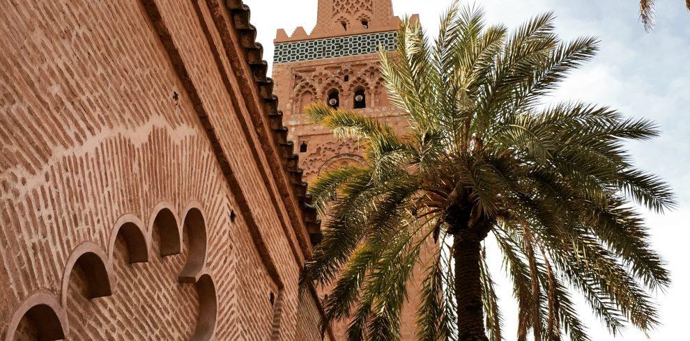 Marrakechwithroamingcamelsmorocco